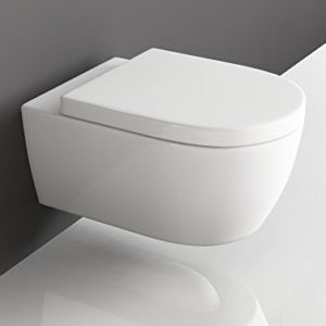 remplacement de wc prix moyen d 39 un plombier pour changer. Black Bedroom Furniture Sets. Home Design Ideas