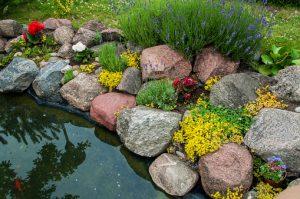 Petit Bassin Avec Pierres Naturelles