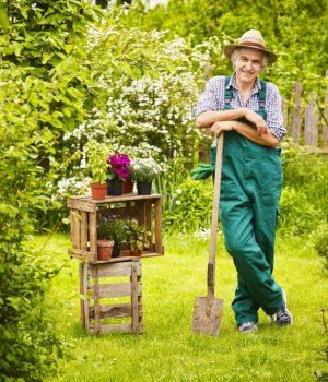 entretien de jardin quel budget moyen l 39 heure ou