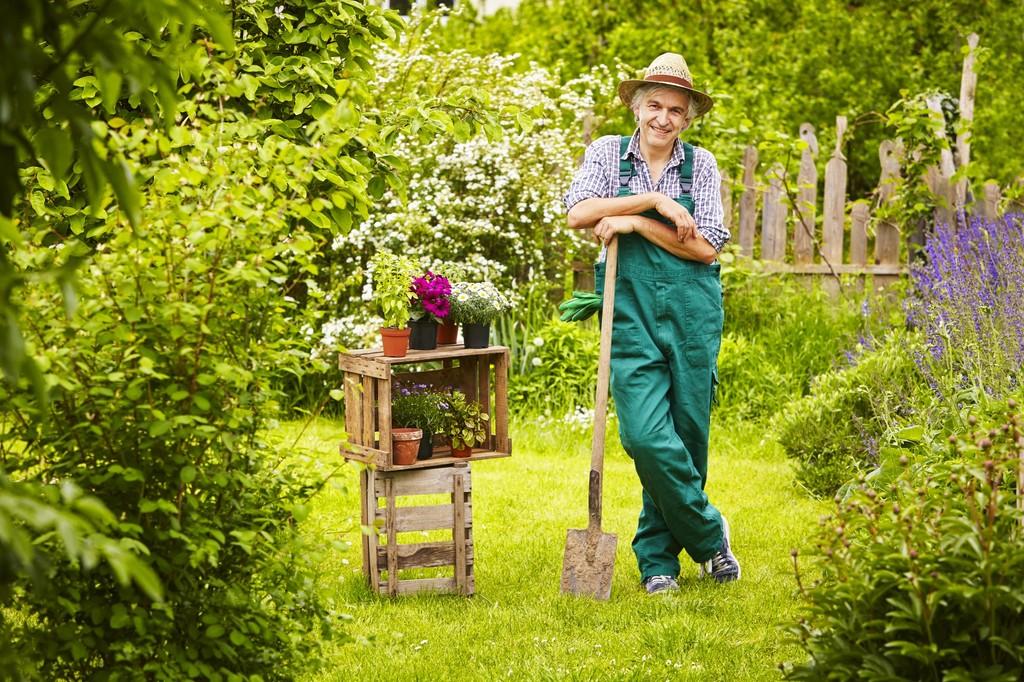 Entretien de jardin quel budget moyen l 39 heure ou for Recherche jardinier